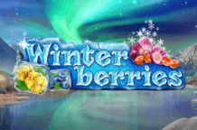 winterberries-logo1
