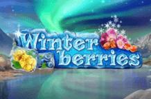 winterberries-logo1