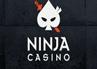 Ninja FI 140x100
