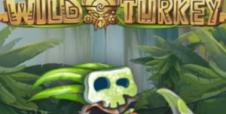 Wild Turkey – Hullujen kalkkunoiden jäljillä